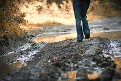 самостоятельно гуляющ стоковое фото rf