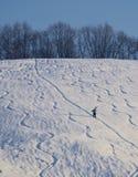 Самостоятельно, в белом снеге стоковая фотография