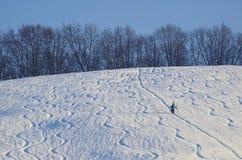 Самостоятельно, в белом снеге стоковое изображение
