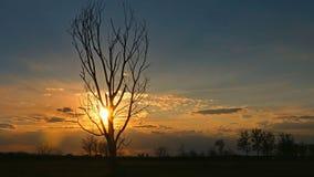 Самостоятельно в заходе солнца стоковое фото
