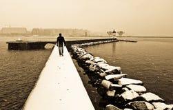 самостоятельно в зиме Стоковое фото RF