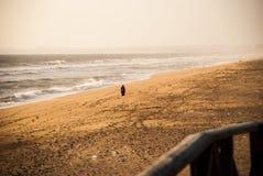 Самостоятельно в пляже Стоковая Фотография