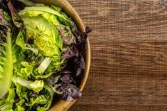 Самоцвет свежего сырцового зеленого салата красный маленький на коричневой древесине Стоковое фото RF