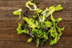 Самоцвет свежего сырцового зеленого салата красный маленький на коричневой древесине Стоковые Изображения RF