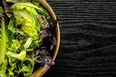 Самоцвет свежего сырцового зеленого салата красный маленький на черной древесине Стоковые Изображения