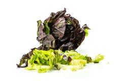 Самоцвет свежего сырцового зеленого салата красный маленький изолированный на белизне Стоковые Изображения RF