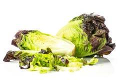Самоцвет свежего сырцового зеленого салата красный маленький изолированный на белизне Стоковое фото RF
