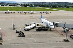 Самолет кондора Стоковое Изображение RF