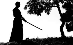 самураи Стоковые Изображения RF
