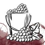 Самые лучшие виноградины вина в ведре бесплатная иллюстрация
