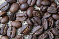 Самые лучшие отборные питье дела кофейных зерен и концепция напитка, cl Стоковые Фотографии RF