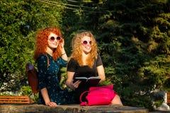 Самые лучшие подруги читают тетрадь в парке Стоковые Фото