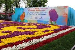 Самый большой ковер тюльпанов мир в Sultanahmet, Стамбуле Стоковые Фотографии RF