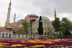 Самый большой ковер тюльпанов мир в Sultanahmet, Стамбуле Стоковое Изображение RF
