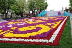 Самый большой ковер тюльпанов мир в Sultanahmet, Стамбуле Стоковая Фотография