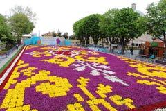 Самый большой ковер тюльпанов мир в Sultanahmet, Стамбуле Стоковые Изображения RF
