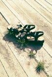 Сандалии лета женщины в теплой солнечности на деревянных планках с песком и травой, со свободным пустым космосом для экземпляра - стоковые изображения