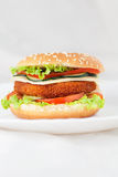 Сандвич бургера зажаренного цыпленка или рыб Стоковое Изображение