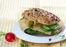 сандвич гастронома сыра Стоковые Изображения