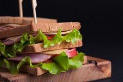 Сандвич конца-вверх большой с ветчиной, сыром, томатами и салатом на провозглашанном тост хлебе на темной предпосылке стоковые фото