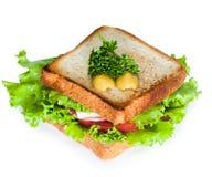 Сандвич на белой предпосылке Стоковые Изображения RF