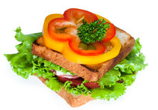Сандвич на белой предпосылке Стоковое Фото
