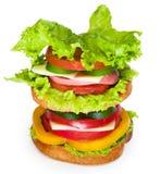 Сандвич на белой предпосылке Стоковое Изображение RF