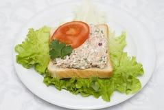 Сандвич салата туны Стоковые Изображения RF