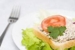Сандвич салата туны Стоковые Фотографии RF