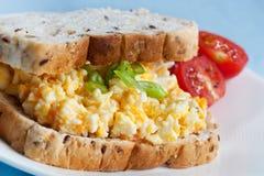 сандвич салата яичка Стоковая Фотография