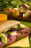 сандвич салями диетпитания сыра стоковое изображение