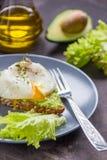 Сандвич с авокадоом и краденным яичком завтрак здоровый Стоковое Изображение RF