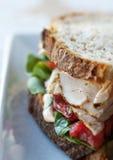 Сандвич Турции Стоковые Фото