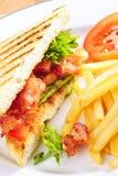 сандвич blt Стоковые Изображения RF