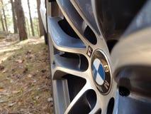 САНКТ-ПЕТЕРБУРГ, РОССИЯ: Взгляд со стороны представления BMW X5 m катит внутри лес на 20-ое июля 2018 стоковые изображения