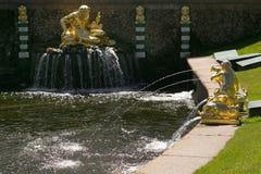 Санкт-Петербург, Россия - 28-ое июня 2017: каскад фонтанов в Peterhof в Санкт-Петербурге Петербурге Стоковое Изображение