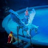 Санкт-Петербург, Россия - 8-ое января 2017: Представление цирка - вещее сновидение - часть взгляда Стоковое Изображение