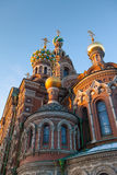 Санкт-Петербург, собор воскресения на крови, часть, значки мозаики, золотые куполы Стоковые Изображения RF