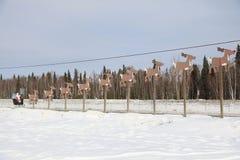 Санта и олени стоковое изображение rf