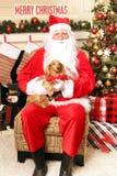 Санта и собака Стоковое фото RF