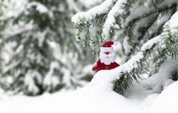 Санта Клаус под деревом стоковые изображения