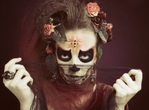Санта Muerte. стоковое изображение