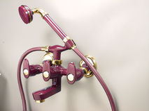 санузел ливня Индии faucet конструктора самомоднейший Стоковые Изображения RF