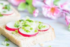 Сандвичи еды весны пикника с сырцовыми редиской и chives стоковое изображение