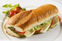 Сандвич с моццареллой и томатами Стоковые Изображения RF