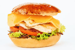 Сандвич гамбургера с цыпленком и сыром Стоковое Изображение