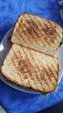 Сандвич гриля Стоковая Фотография RF