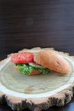 Сандвич диеты Стоковое фото RF