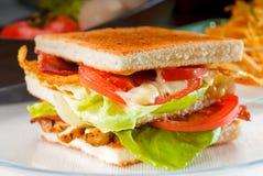 сандвич клуба Стоковое Изображение