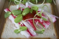 Сандвич ростка гречихи и солнцецвета Стоковые Изображения RF